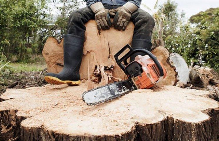 На Миколаївщині молодик вирішив нарубати дрів під час пожежі