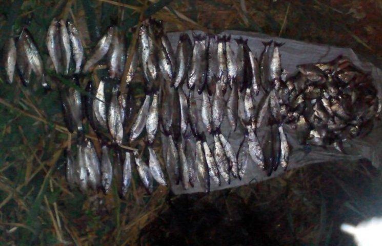 Херсонські прикордонники впіймали браконьєра з Миколаївщини, що наловив риби на 45 тис. грн