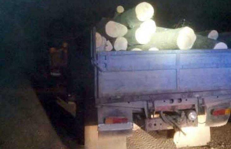 На Вінниччині селянин виростив у себе на городі три вантажівки лісу