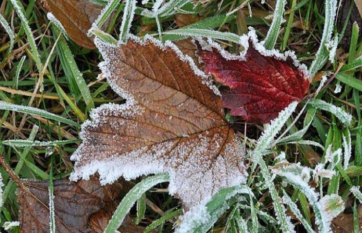 Вже цієї ночі на Хмельниччині очікуються заморозки