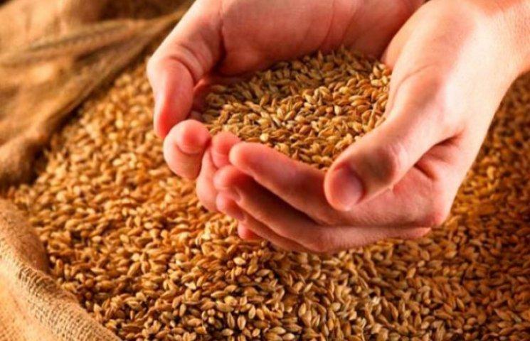 Хмельниччина посіла друге в державі місце за рівнем урожайності