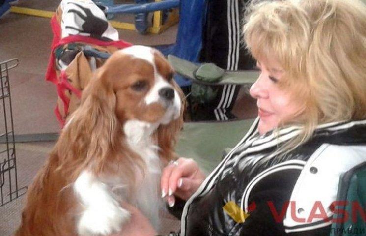 Вінниця приймала парад собак
