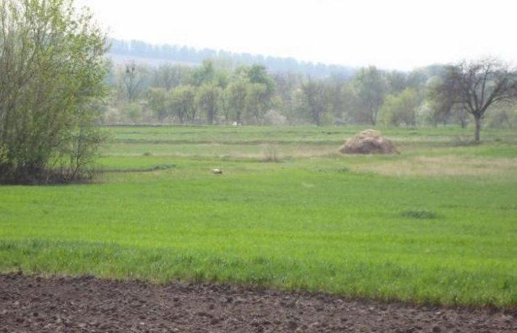 Вінницькі чиновники незаконно роздали землю вартістю в 10 млн.грн.