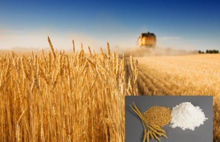Рис і пшениця незабаром можуть повністю зникнути