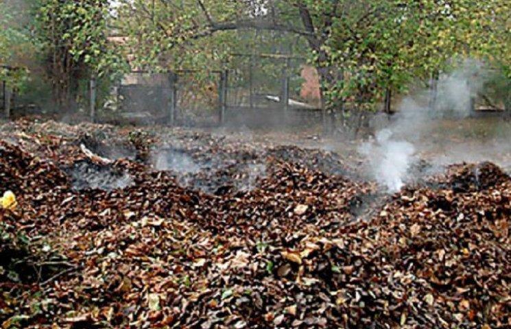 Хмельницьких паліїв сухого листя каратимуть гривнею