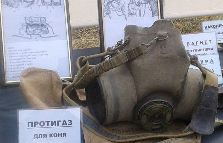 Як вінничани відсвяткували 150-річчя від дня народження Грушевського