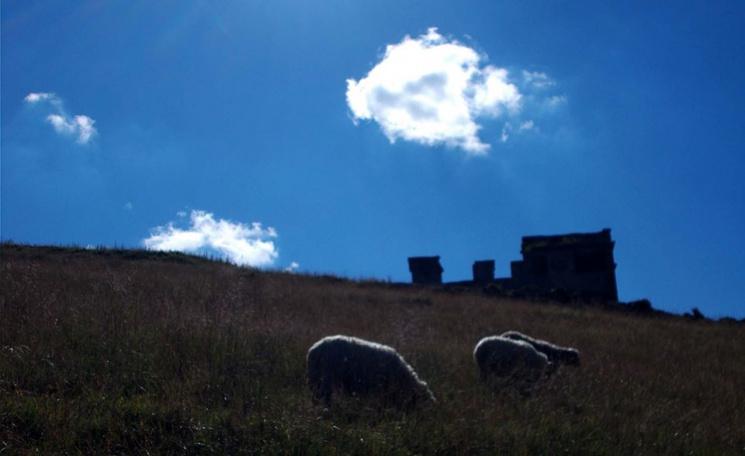 Полонина Боржава - гірський масив розташований у межах Воловецького, Міжгірського, Свалявського, Іршавського і (частково) Хустського районів