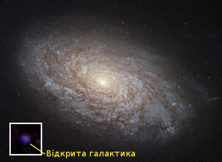 Украинские ученые сделали колоссальное открытие