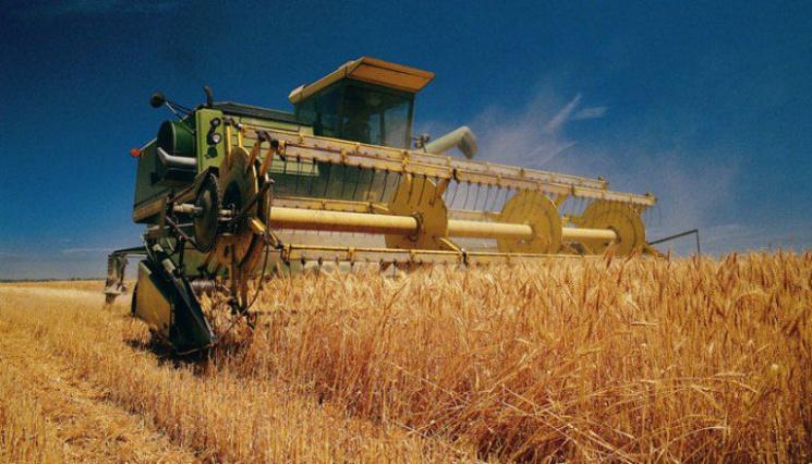 Урожай нетривалого зберігання: Які інвестиції потрібні Запоріжжю для агропрориву