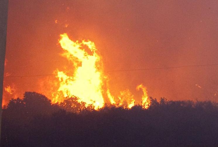Взрывы наскладе под Мариуполем вызваны поджогом— ВСУ