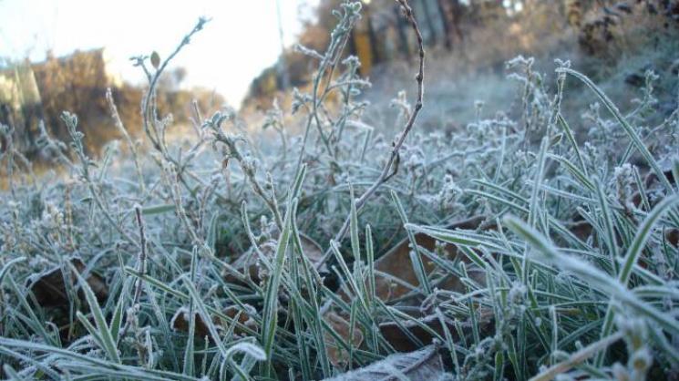 Жителів Києва попередили про нічні заморозки, починаючи зчетверга