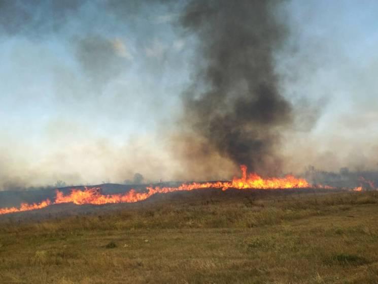 На Миколаївщині вогонь охопив майже 65 гектарів території (ФОТО)