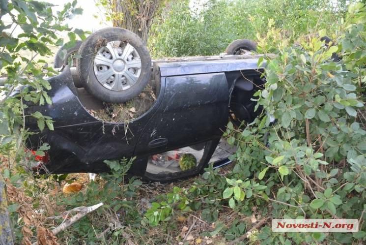 Під Миколаєвом у ДТП постраждала сім'я з Житомира: Автівка вилетіла у кювет та перекинулася (ФОТО)