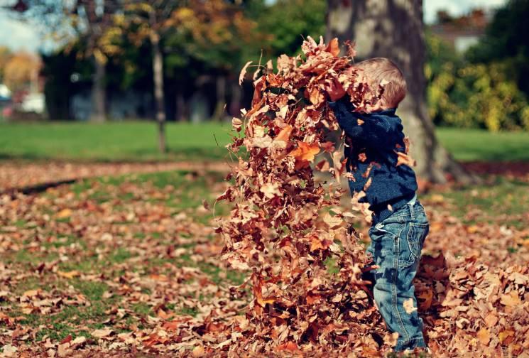 Без літньої ностальгії: ТОП-11 способів залишатися здоровими, веселими і щасливими восени