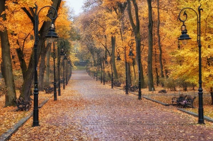 Куди піти і що подивитися у Львові 13-14 жовтня