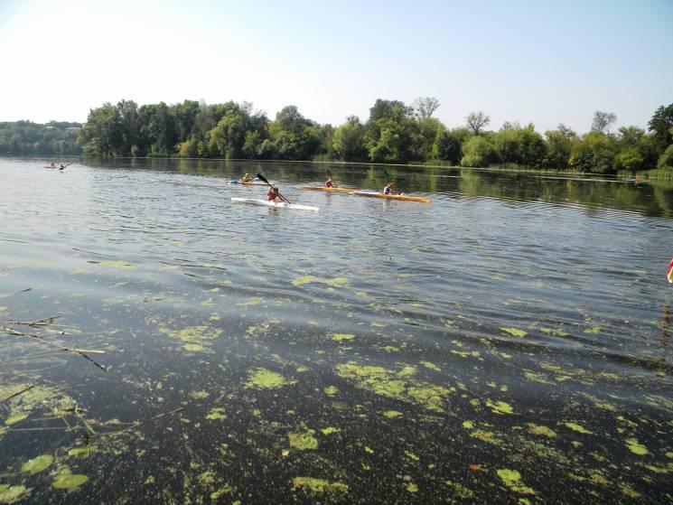 У Сумах змагались веслувальники на байдарках та каное