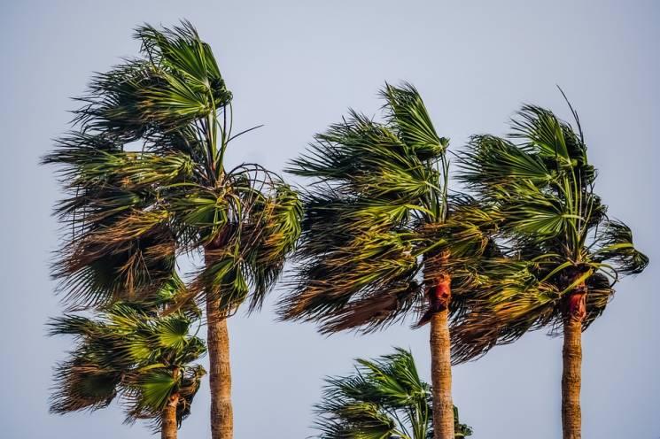 Рятувальники попереджають про посилення вітру в Сочі