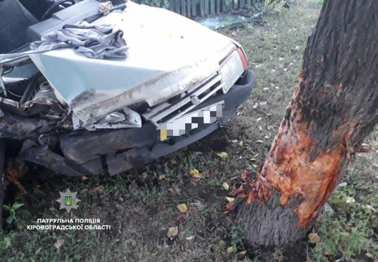 У Кропивницькому п'яний водій вщент розтрощив власне авто, коли брав на таран дерево (ФОТО)