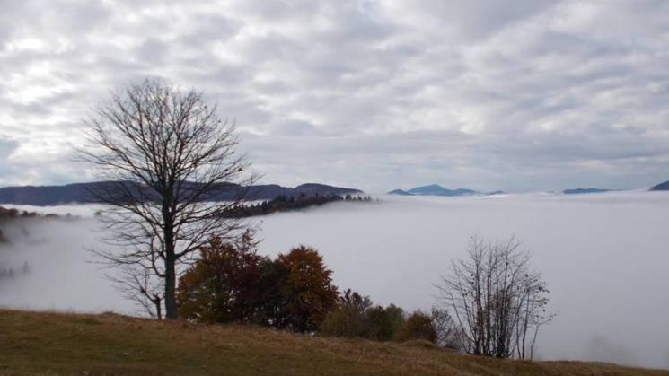 Яким фантастичним буває туманний ранок у Карпатах восени (ФОТО)