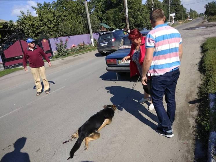 У собаки, якого намагалася позбутися жителька Бершаді, з'явився новий господар