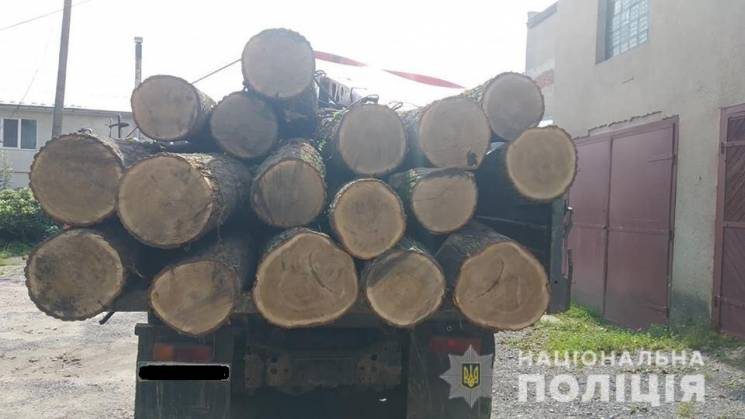"""На Тернопільщині копи зупинили """"ЗІЛ"""", наповнений дубовими колодами (ФОТО)"""