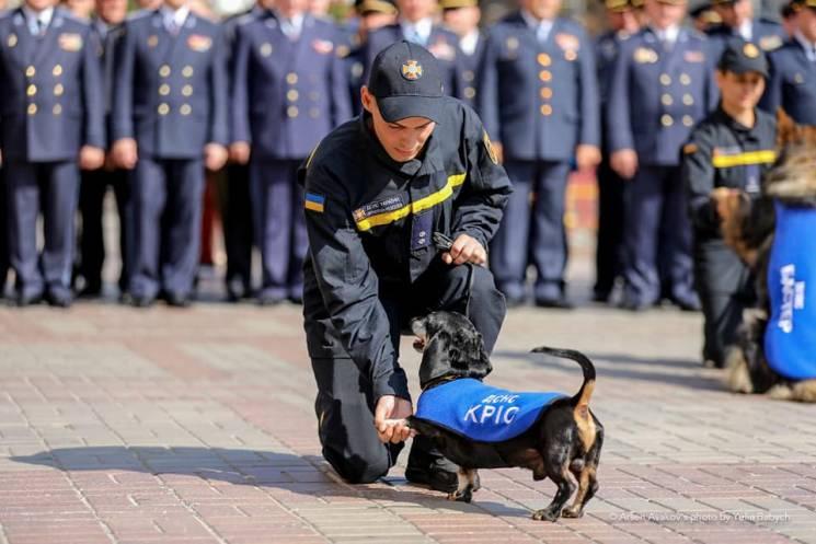 Харківського пса-рятувальника провели на пенсію (ФОТО)