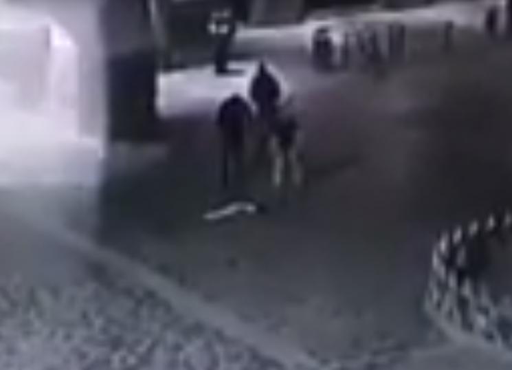У Мукачеві троє молодиків украли з ратуші прапор України (ВІДЕО)