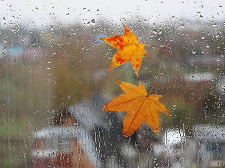 Грозові дощі та зниження температури: В Україну завітала справжня осінь