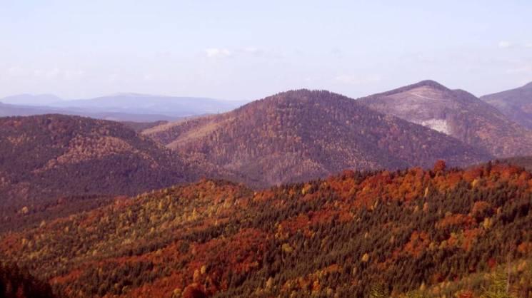 Як осінь кольорово змінює гірські полонини у Ґорґанах (ФОТО)