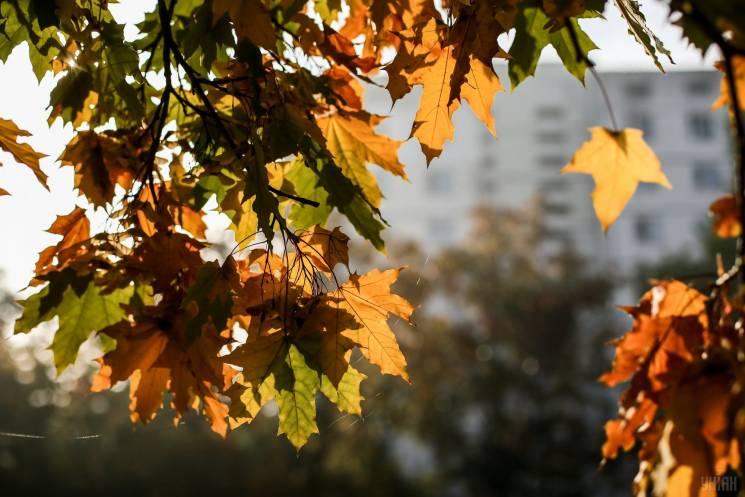 Літо завершилось: У Києві вже панує метеорологічна осінь