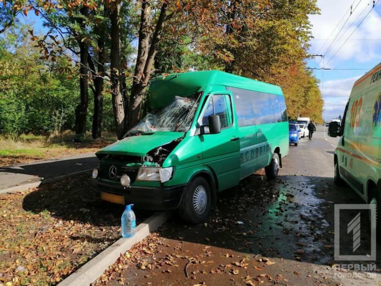 У Кривому Розі маршрутка протаранила дерево: Вісім людей госпіталізовано (ФОТО)