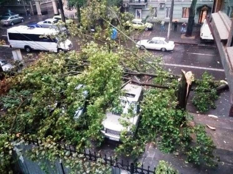 Наслідки негоди в Одесі: Постраждала жінка, повалені дерева, розбиті автівки (ФОТО)