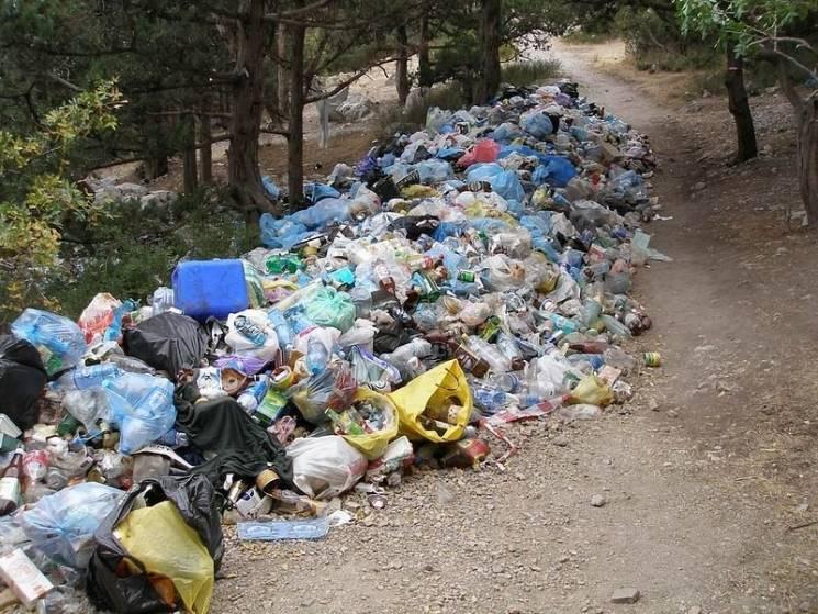 У мережі оприлюднили показові світлини потопаючих у смітті Севастополя та Феодосії (ФОТО)
