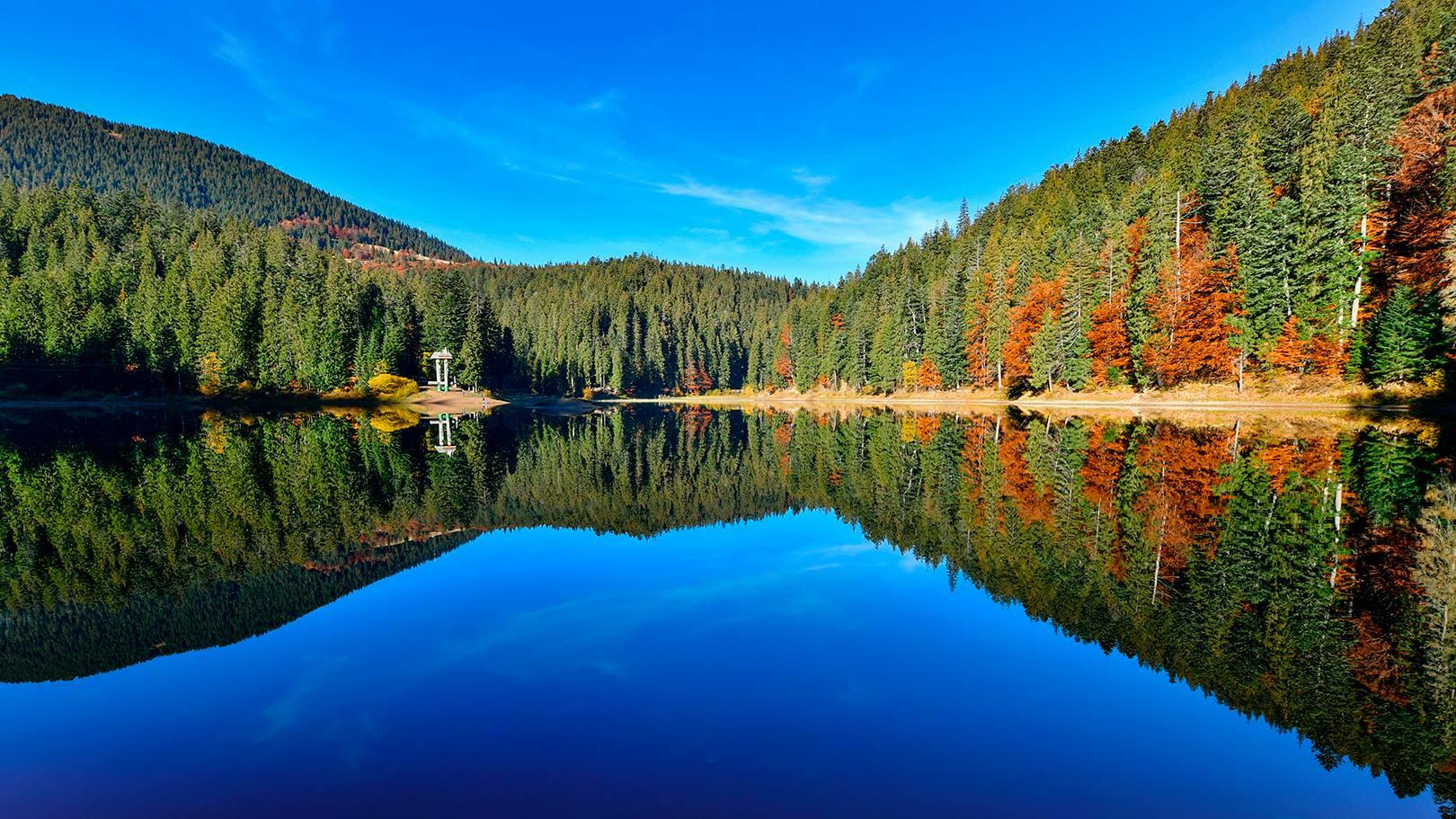 """Результат пошуку зображень за запитом """"синевир осінь"""""""